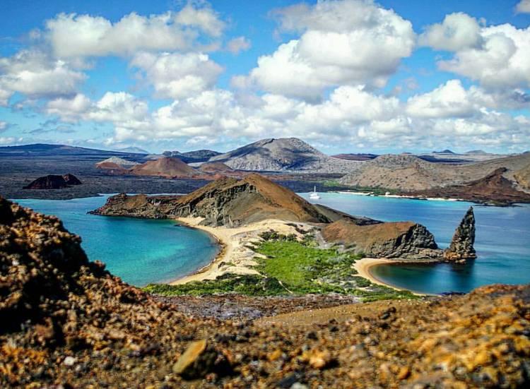 Galapagos 13