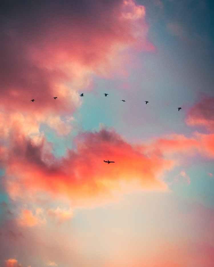 scenic photo of dramatic sky
