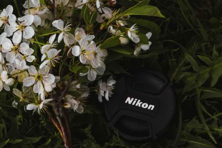 black nikon dslr camera lens cover near white petaled flowers