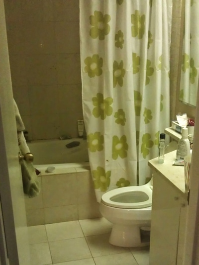 bathroom remodeling before