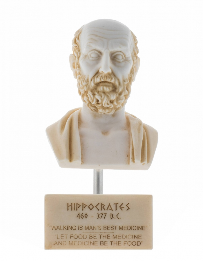Hippocrates of Kos Father of Medicine Alabaster Bust Statue Marble Base