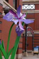 Blue Flag Iris sculpture stands tall in front of Canal Park