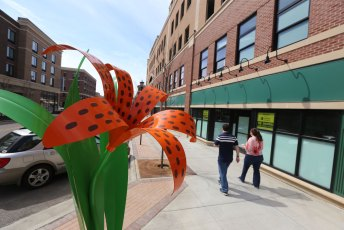 The blossoms of our Tiger Lily sculpture  are a welcome sight of spring in downtown Kent.