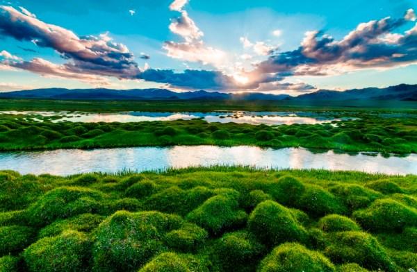 12 лучших фотографий природы National Geographic - Фото ...