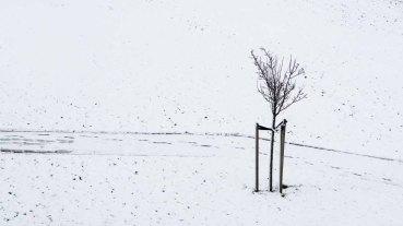 © Hans van Overbeek