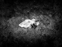 Week 2 / The Fallen