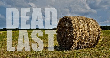 """Hay bale with the words """"dead last"""" in the landscape"""