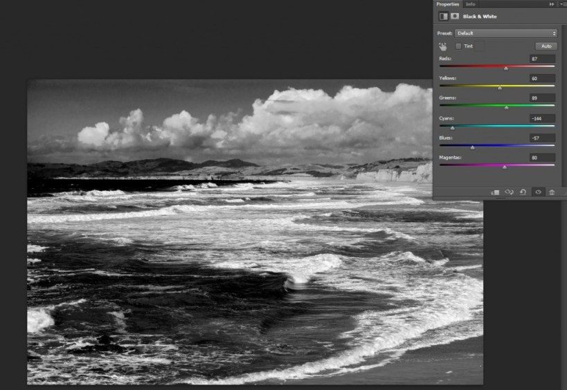 BW Adjustment Layer2