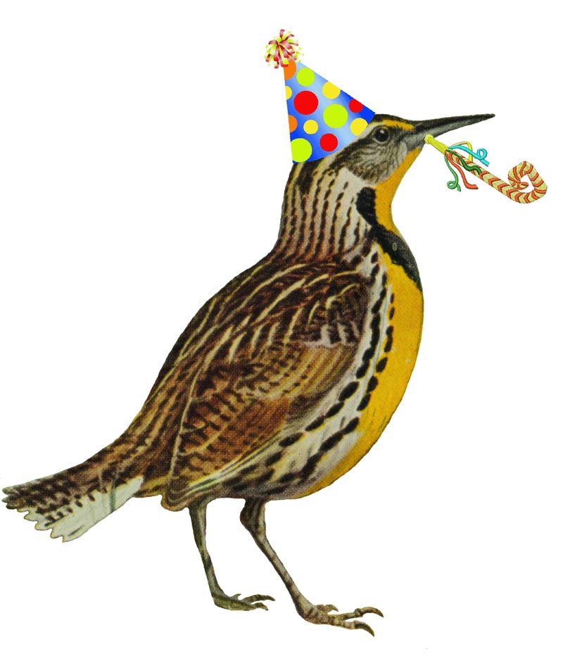 13th Steet Studio Happy Birthday Happy Birthday