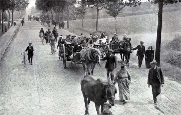 Réfugies belges avec leurs chevaux de trait, Source Wikipédia