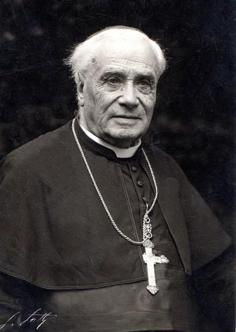 Le Cardinal Luçon - Collection Véronique Valette