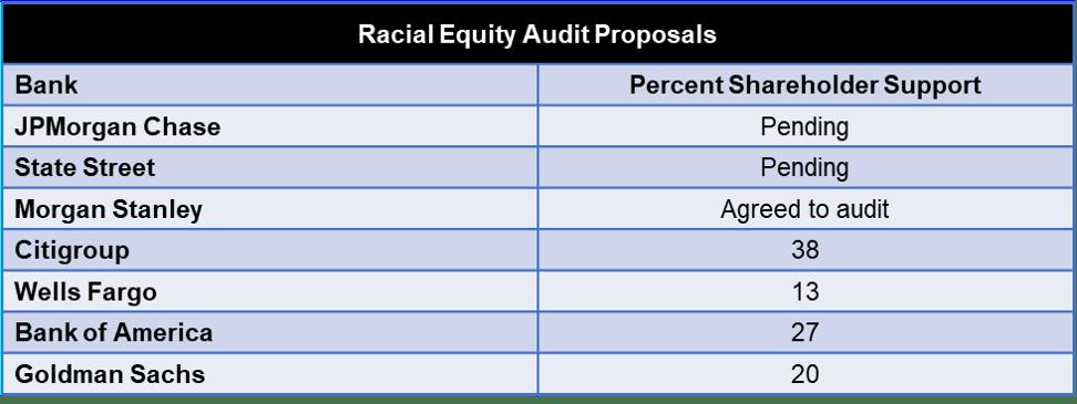 racial-audit-votes-may-17.png?w=1080&ssl