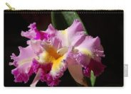 Nancy's Novelty Photos On Pixel Products - Carry All Pouch