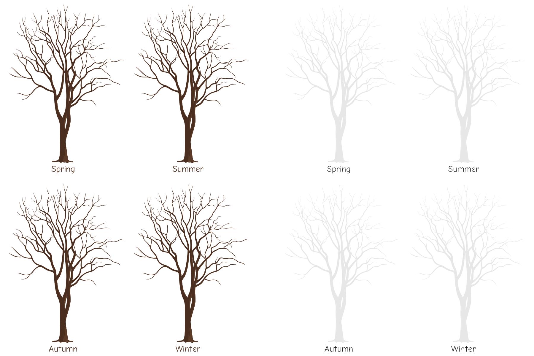 Four Seasons Tree Templates Paperzip