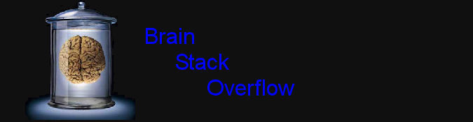 Brain Stack Overflow