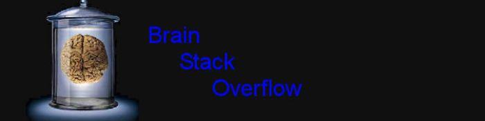Brain Stack OVerflow