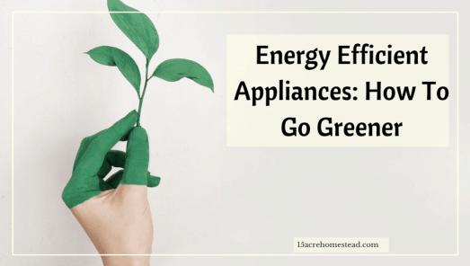 Energy Efficient Appliances: How to Go Greener
