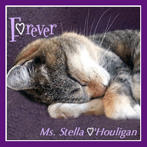 Ms+Stella+O'Houligan+Forever