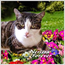 Nerissa Forever badge, Ann
