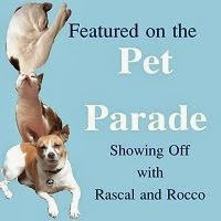 New Pet Parade featured on button 200x200