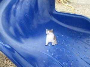 Down slide