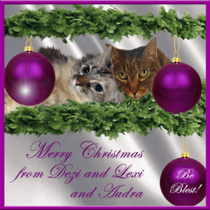 DezizWorld 2015 Holiday Ecard