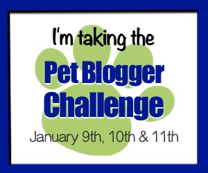 Pet-Blogger-Challenge