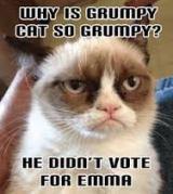 Grumpyvote