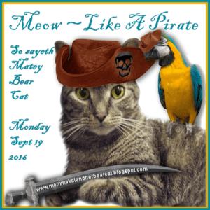 meow-likeapirateday-9-19-2016-300x300