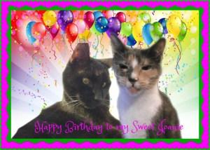 joanies-birthday
