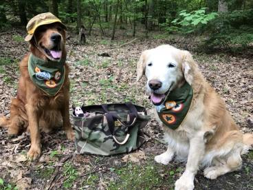 Bean & Trooper in camp gear sitting with packed back
