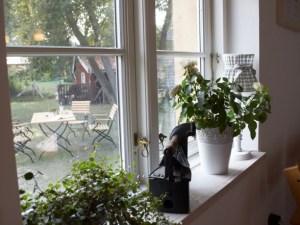 Mühle Ahrenshoop Blick aus dem Fenster