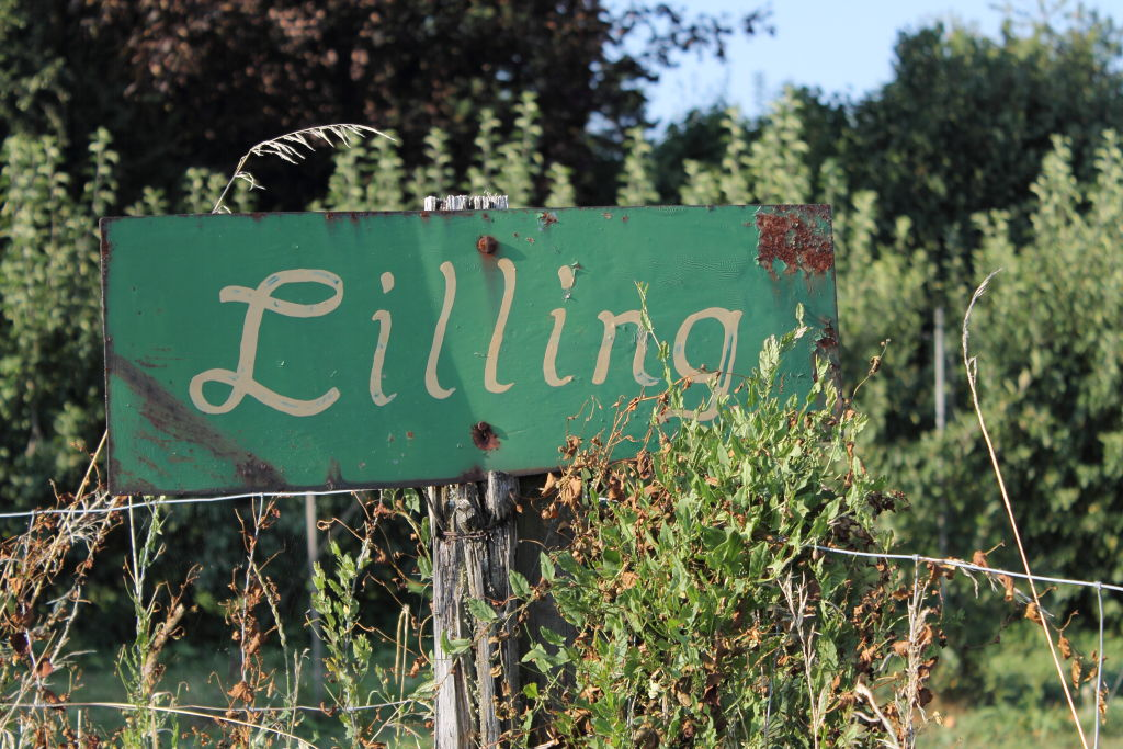 L - Lilling - die Bio-Hopfen Hochburg