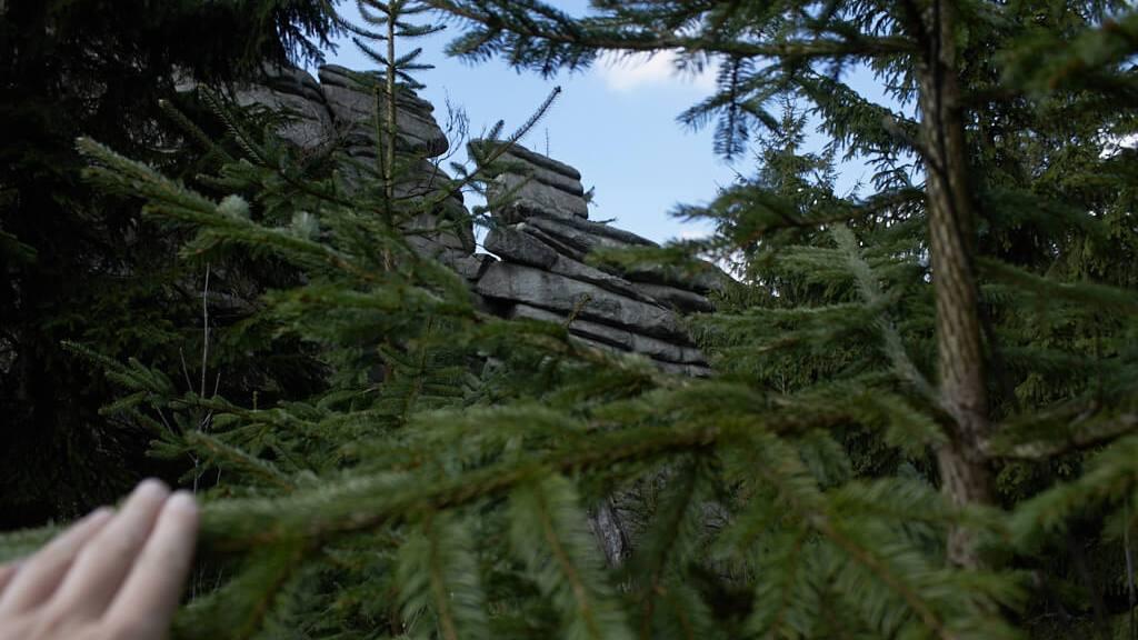 Wanderung auf den höchsten Berg Frankens_Der Schneeberg im Fichtelgebirge