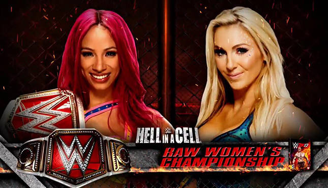 Image result for sasha banks hell in a cell