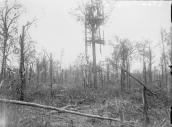 IWM Q684 Trones Wood Observation point presumed to have been at the southern end of the wood overlooking Maricourt