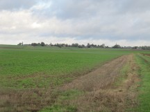 Looking north towards Montauban from the position of the original British front line.