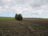 Approach to Village for 18th Manchesters
