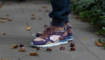 Asics Gel Lyte V Desert Pack x Offspring_84