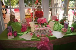 Bright pink and lime candy bar