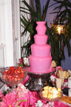 "Pink ""chocolate"" fountain"