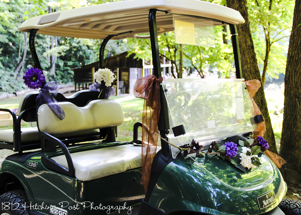 Kala and Greg's Lakeside Wedding Ceremony Golf Cart Decorated For Wedding on ford think electric golf cart, burning man golf cart, pink golf cart,