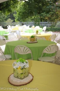 Yellow Lime Wedding-10