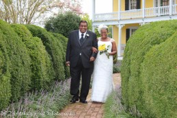 Yellow Lime Wedding-24