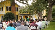 Yellow Lime Wedding-37