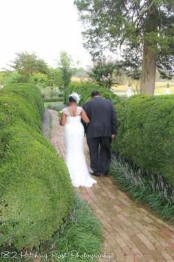 Yellow Lime Wedding-8