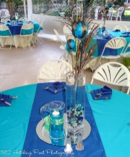 Peacock theme with Marine blue runner and napkins on Turquoise