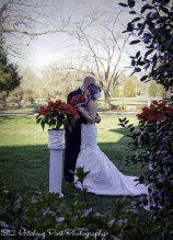 Columns topped with poinsettias for December outdoor elopement