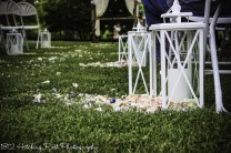 White lanterns with petals spilling out