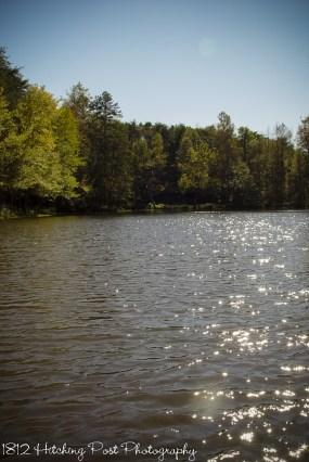 Sparkling lake in sunshine